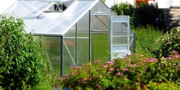 skleník