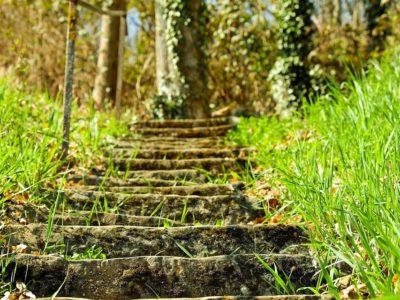 schody v zahrade