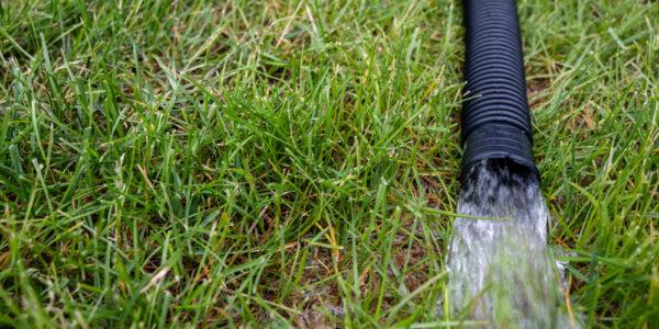 dešťovou vodu